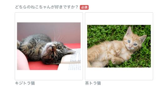 猫ちゃんの画像選択