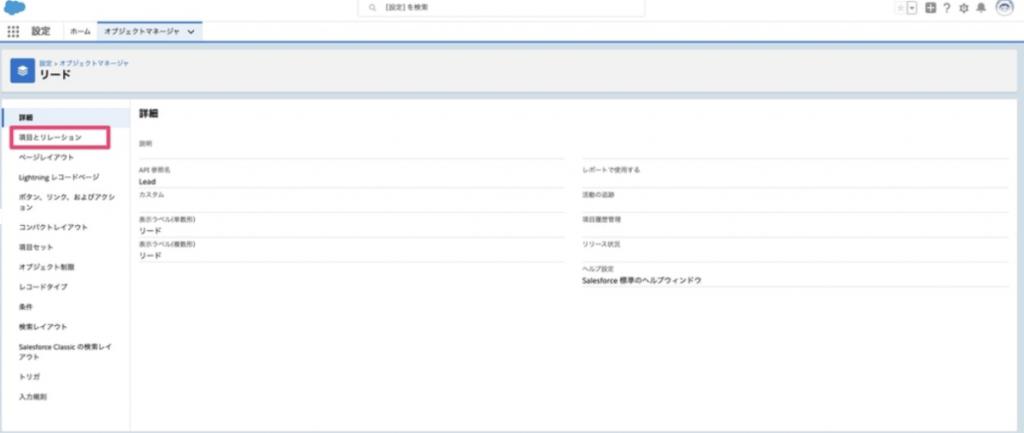 Salesforce 項目とリレーション案内画面
